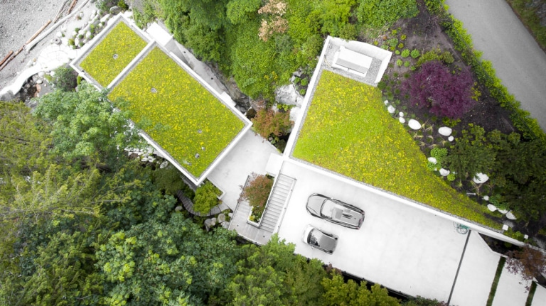 5-Ways-to-Create-a-Thriving-Green-Roof