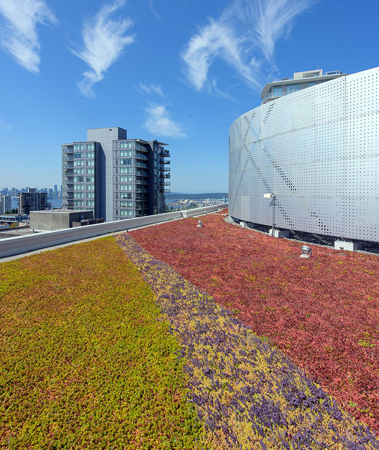 CentreView-Green-Roof-1033
