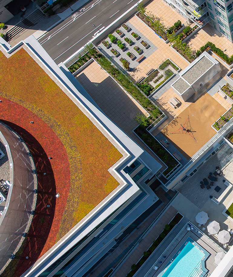 Vancouver Green Roofs toronto