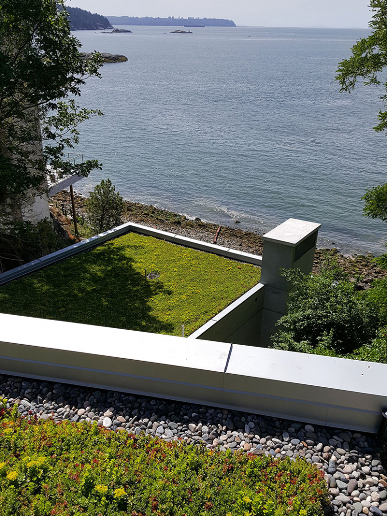 glen-eagle-green-roofs-4