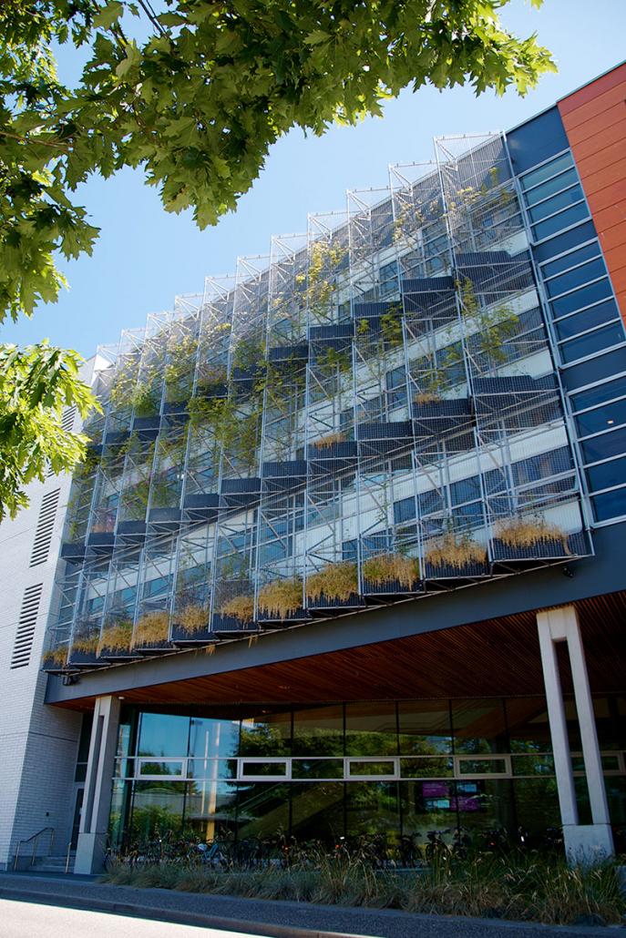 green-facade-building-design