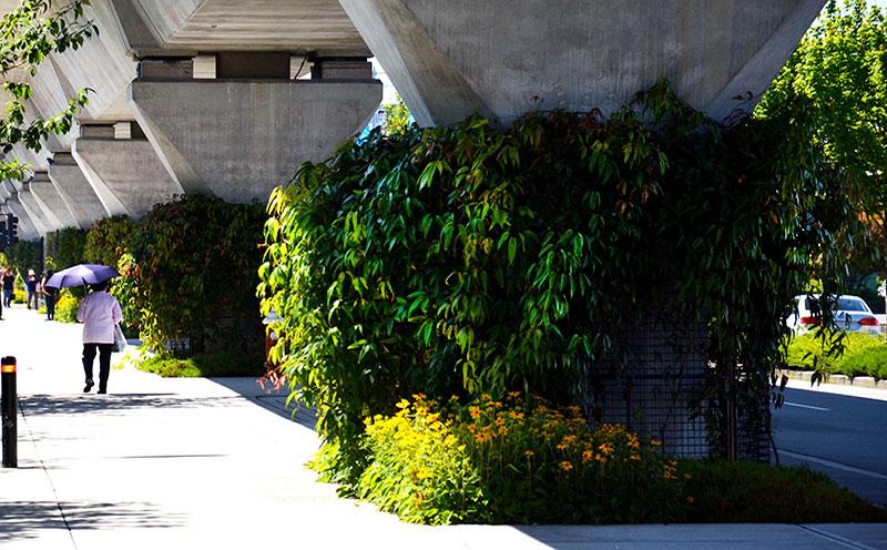 green-facade-toronto-vancouver
