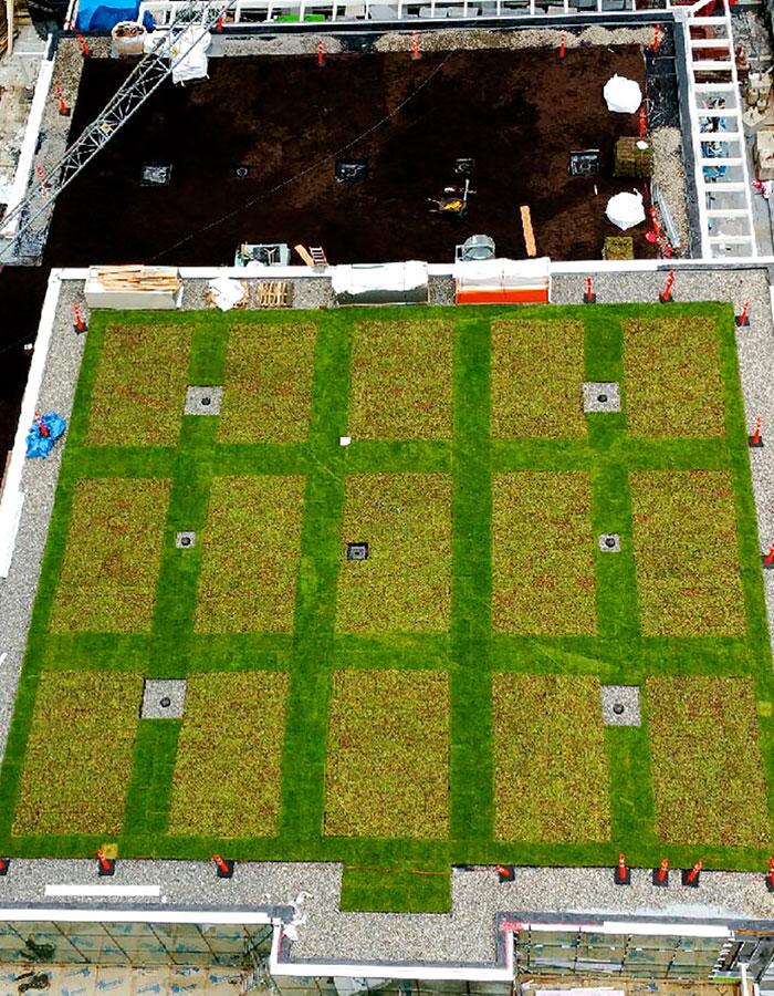green-living-walls-toronto-vancouver