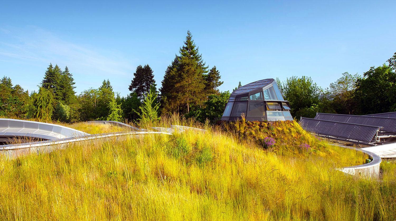 green roofs living walls green facades