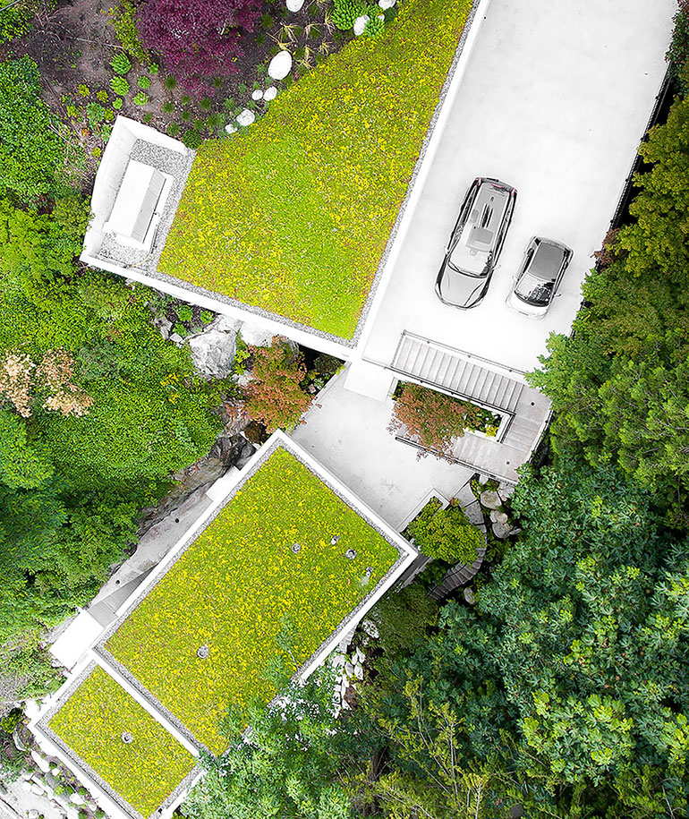 green roofs toronto