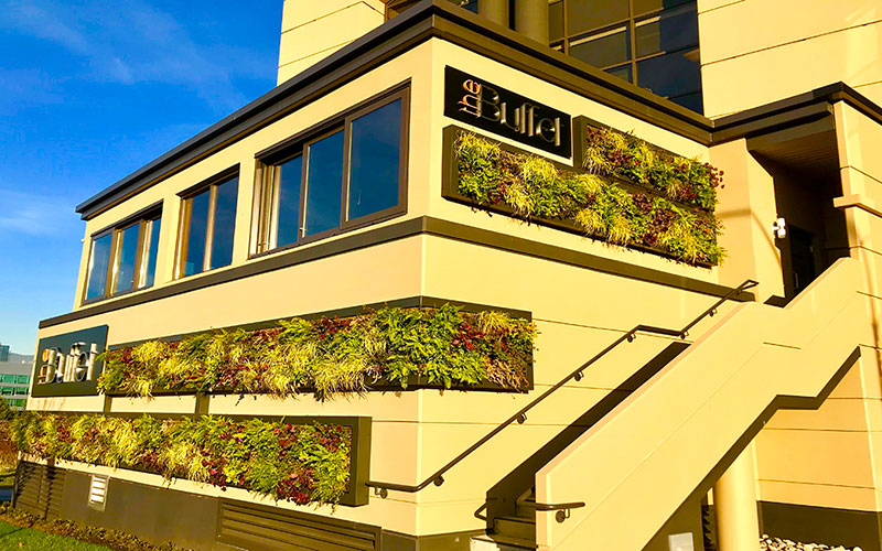 vertical-living-wall-vancouver-toronto