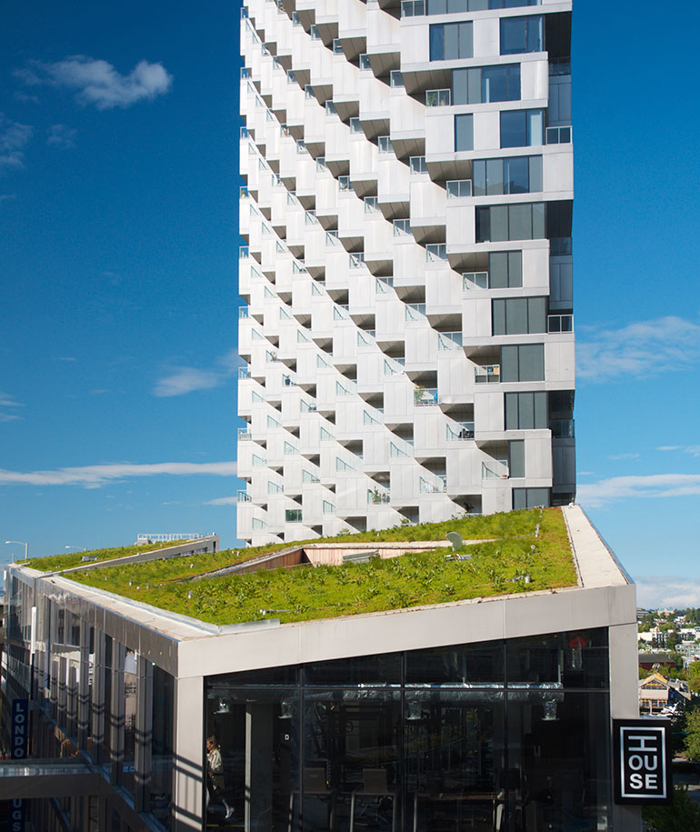 green roof vancouver house
