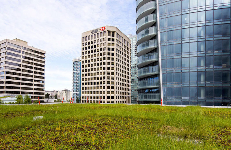 green roof suppliers